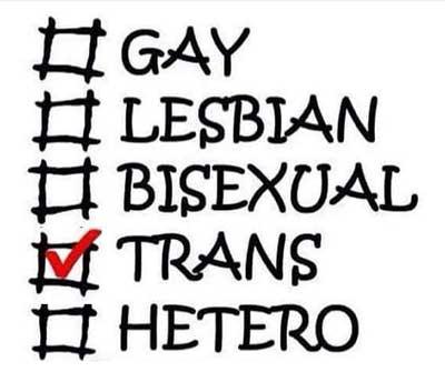 Transsexuell Bisexuell